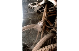 Old rusted bicycles covered with spider webs and dust, stored in a gray brick room